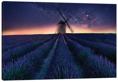Lavender Night Canvas Art Print