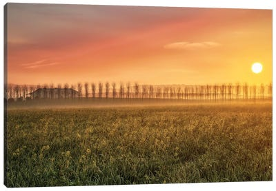 La Luz De Cada Amanecer... Canvas Art Print