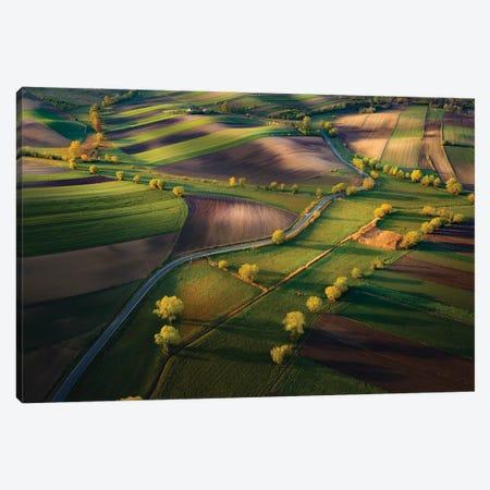 Fields Canvas Print #OXM5966} by Karol Nienartowicz Art Print