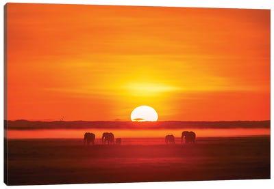 Africa Impression Canvas Art Print