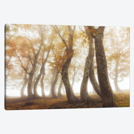 Between Mist And Light Canvas Print #OXM5988} by Luigi Ruoppolo Canvas Art