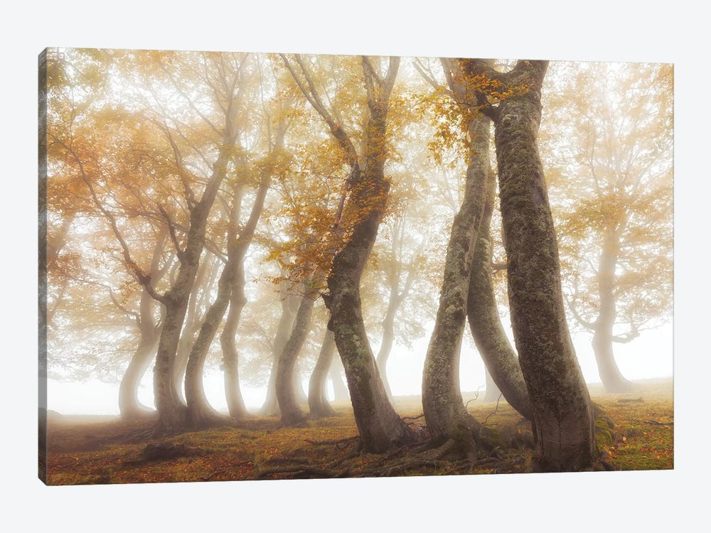 Between Mist And Light by Luigi Ruoppolo 1-piece Canvas Art Print