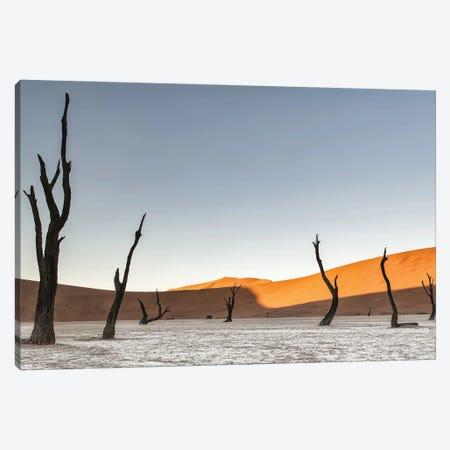 Namibian Desert Canvas Print #OXM5991} by Luigi Ruoppolo Art Print