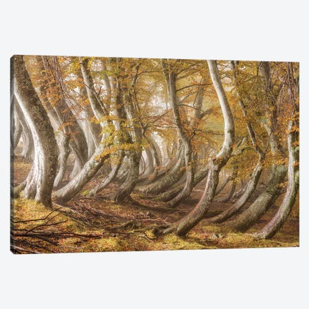 The Wooden Army Canvas Print #OXM5994} by Luigi Ruoppolo Canvas Art