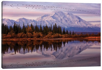 Flying Over Canvas Art Print