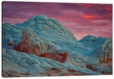 Mars Landing Canvas Art Print