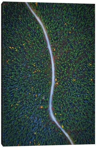 Silent Creek Canvas Art Print
