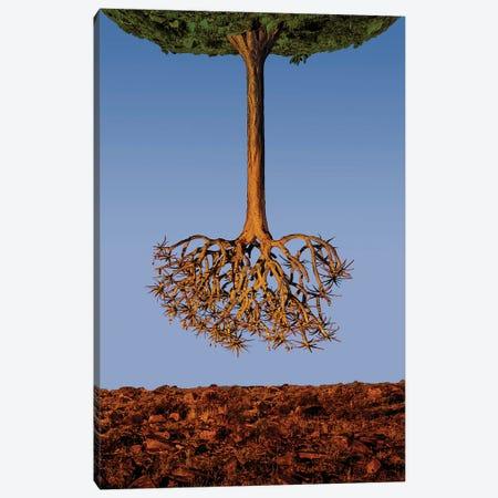 The Upside Down Tree Canvas Print #OXM6040} by Neville Jones Art Print