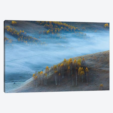 Untitled Canvas Print #OXM6045} by Ovidiu Satmari Canvas Wall Art