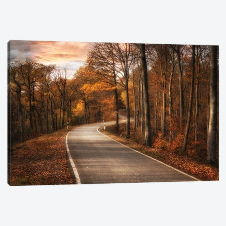 The Road Canvas Print #OXM6077} by Roland Weber Canvas Print