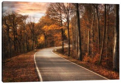 The Road Canvas Art Print