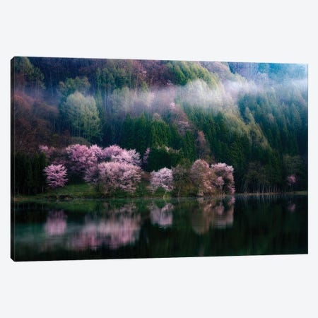 In The Morning Mist Canvas Print #OXM6117} by Takeshi Mitamura Canvas Artwork