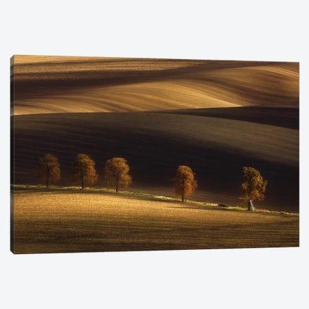Untitled Canvas Print #OXM6138} by Tomasz Rojek Canvas Art Print