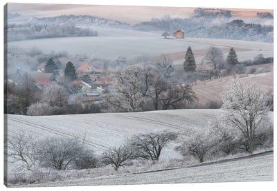 Winter Dream Canvas Art Print