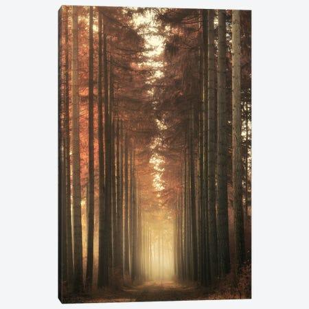 Light Burning Canvas Print #OXM6151} by Ye Canvas Art Print