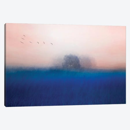 The Tree On The Blue Canvas Print #OXM6245} by Chunggook Yang Canvas Artwork
