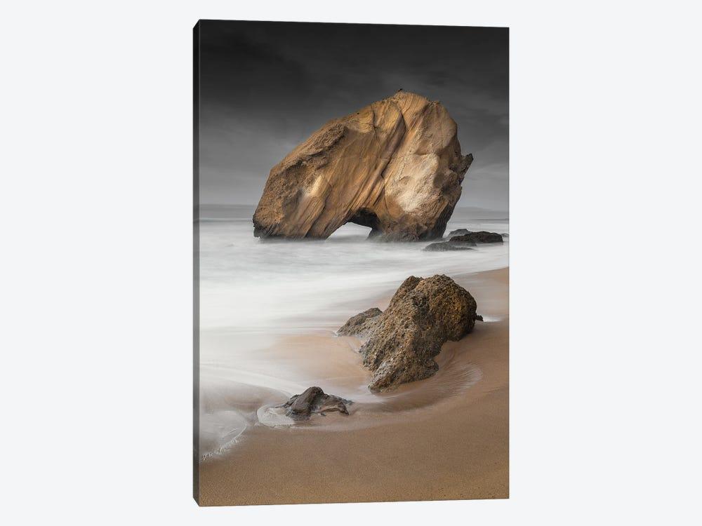 Under A Stormy Sky by Fernando Picarra 1-piece Canvas Art Print