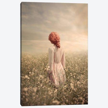 Field In Pastel Canvas Print #OXM6274} by Ildiko Neer Canvas Art Print