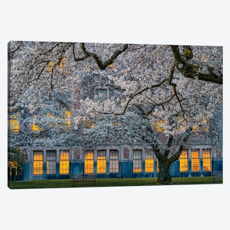 Morning At University Of Washington Canvas Print #OXM6323} by Lydia Jacobs Canvas Art