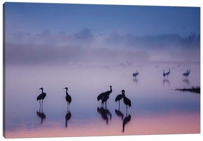 Enchanted Serenity Canvas Art Print