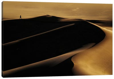 Desert One Canvas Art Print