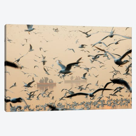 Bird Canvas Print #OXM6350} by Murat Bakmaz Canvas Art Print