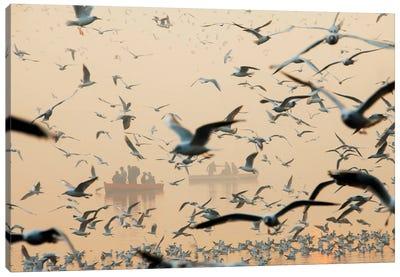 Bird Canvas Art Print