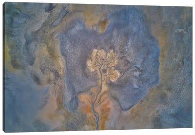 YarapaLap Dring Lake Canvas Art Print