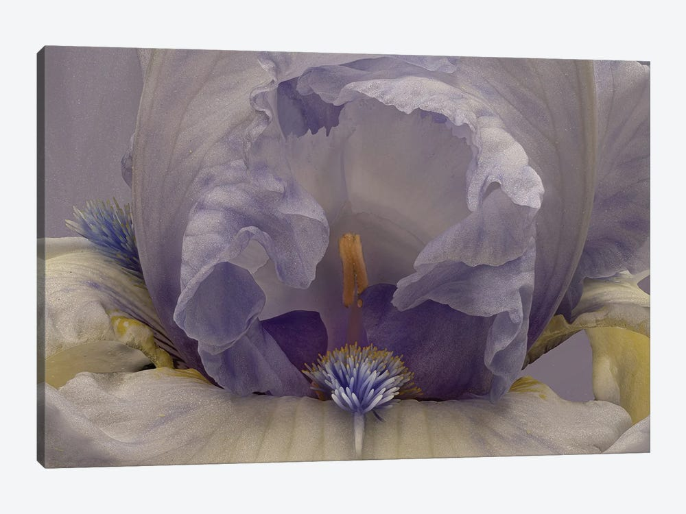 Blue Lagoon by Richard Urbanski 1-piece Art Print