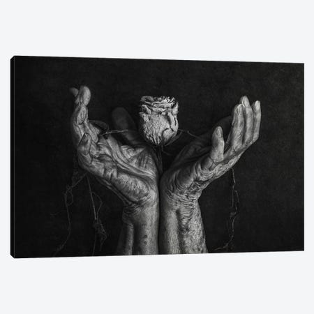 Untitled Canvas Print #OXM6376} by Stephen Clough Canvas Wall Art