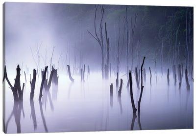 Illusion Morning Canvas Art Print