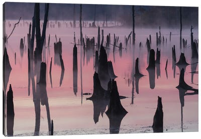 Lake At Morning Canvas Art Print