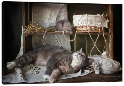 Don't wake up a sleeping cat Canvas Art Print
