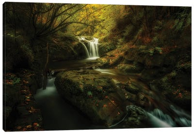 Hell River Canvas Art Print