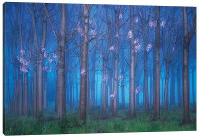 Fairyland Canvas Art Print
