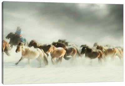 Horses gallop Canvas Art Print