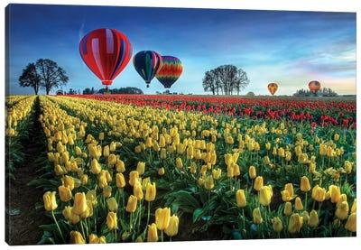 Hot Air Balloons Over Tulip Field Canvas Art Print