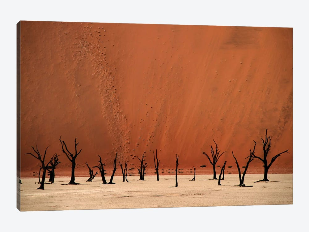 Deadvlei by Hans-Wolfgang Hawerkamp 1-piece Canvas Wall Art