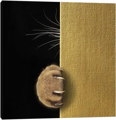 Shy Cat ... Canvas Art Print