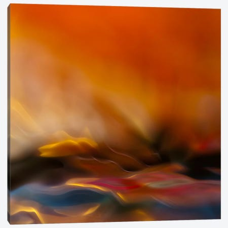 #216 Canvas Print #OXM66} by Willy Marthinussen Canvas Art