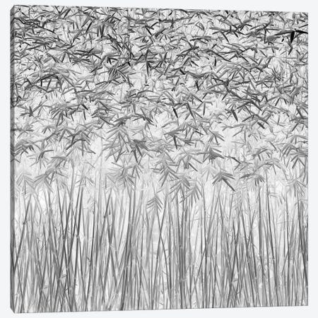 Parallelism Canvas Print #OXM702} by Jefflin Ling Canvas Print