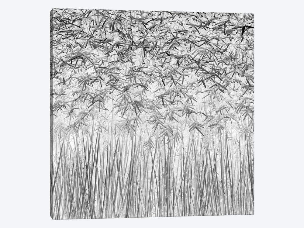 Parallelism by Jefflin Ling 1-piece Canvas Art