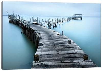 Carrasqueira II by Jesus M. Garcia Canvas Print