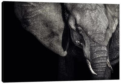 The Matriarch Canvas Art Print