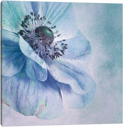 Shades Of Blue Canvas Art Print