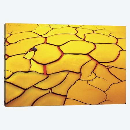 Yellow Ground, Red Heart Canvas Print #OXM92} by E. de Juan Canvas Wall Art