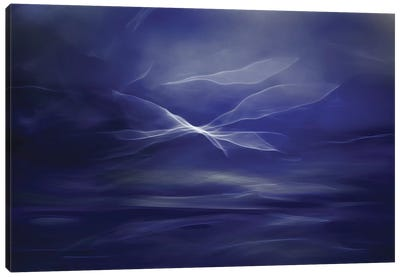 Flight Of The Fairies Canvas Art Print