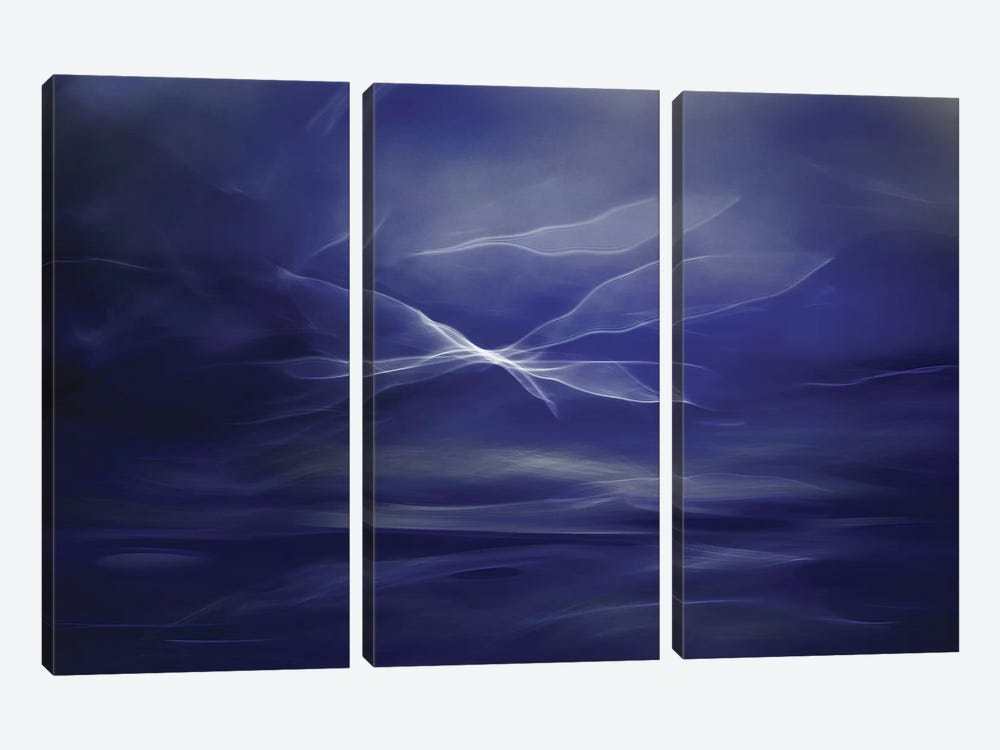 Flight Of The Fairies by Willy Marthinussen 3-piece Canvas Art