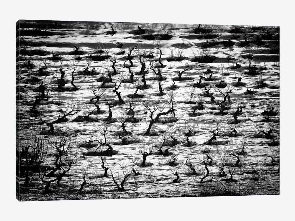 Tortured Souls by Saad Salem Al 1-piece Canvas Print