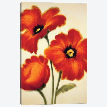 Orange Poppies Canvas Print #PAB1} by Paula Benson Art Print